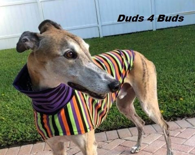 Greyhound Clothing - Pet Halloween - Greyhound Halloween - Halloween Stripes Tee - Greyhound Size