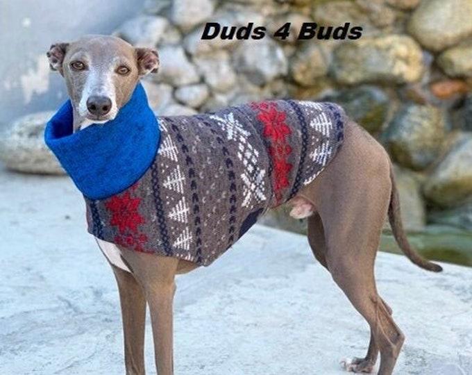 Italian Greyhound Sweater - Blue Bear Sweater - Iggy Duds - Small Dog Sweater -  Italian Greyhound Sizes