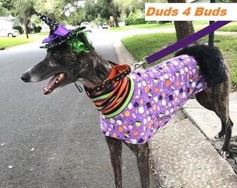 Greyhound Clothing - Pet Halloween - Grehound Halloween - Purple Goblin Dress - Greyhound Size