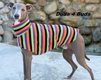 Italian Greyhound Clothing - Pet Halloween - Halloween Stripes - Dog Clothing - Pet Clothing - Small Dog Clothes - Tee Shirt for Dog