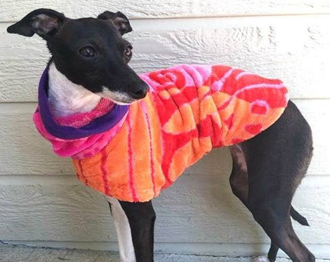 Italian Greyhound Clothing - Sherbet After Bath Jacket - Iggy Duds - Dog Bathrobe - Italian Greyhound sizes