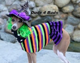 Italian Greyhound Clothing - Pet Halloween - Halloween Stripes Dress - Dog Clothing - Pet Clothing - Small Dog Clothes - Tee Shirt for Dog
