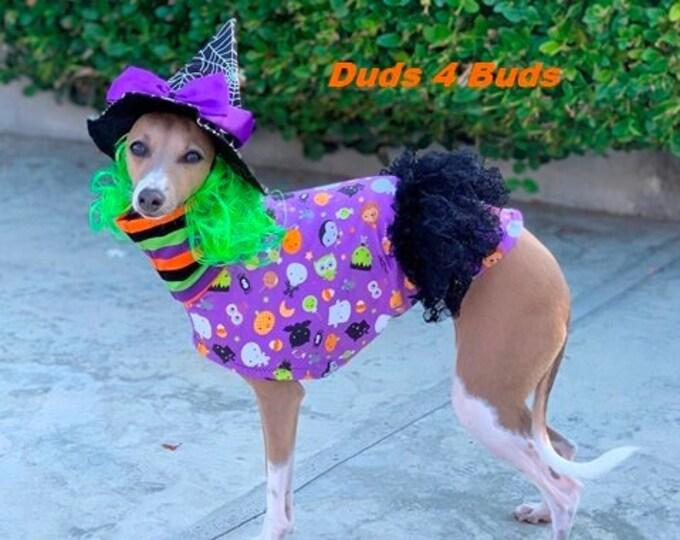 Italian Greyhound Clothing - Pet Halloween - Italy Greyhound - Iggy Clothing - Purple Goblin Dress - Italian Greyhound Size