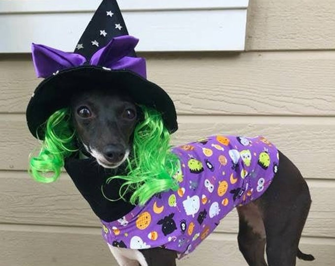 Pet Halloween - Halloween Tee - Italian Greyhound Sizes