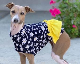 Dog Dress - Italian Greyhound Clothing - Dog Clothing - Italy Greyhound - Blue Daisy - Italian Greyhound Sizes