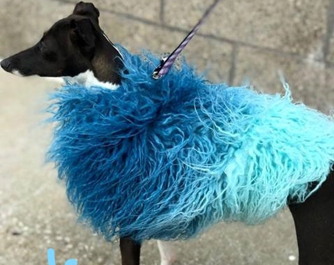 Italian Greyhound Clothing - Teal Ombre - Fur Jacket for Dog - Girl dog Coat - Fur Coat for Dog - Fur Coat for Dog