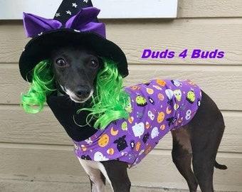 Italian Greyhound Clothing - Pet Halloween - Halloween Tee - Italian Greyhound Sizes