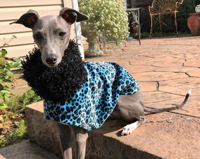 Italian Greyhound Clothing. Blue Cheetah Velboa. Italian Greyhound Coat. Dog Clothing. Pet Clothing. Small dog clothes. Dog Jacket. Dog Coat