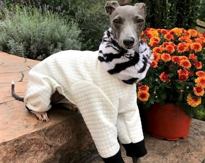 "Dog Pajamas. ""White Jumper with zebra Faux Fur"" - Italian Greyhound and small dog sizes"