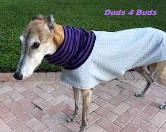 Greyhound Coat - Halloween for Greyhound - Greyhound Jacket - Gray Sweatshirt - Greyhound Sizes