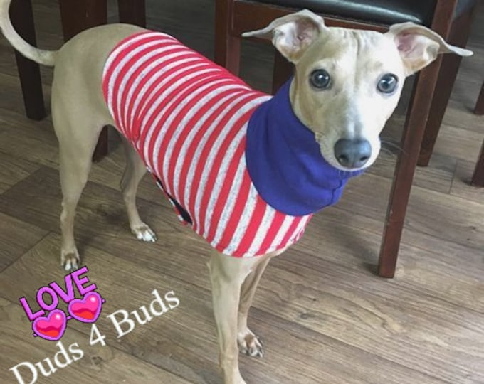 Italian Greyhound Sweater - Red Stripe Sweater - Italian Greyhound Clothing - Sweater for Iggy - Dog Clothes - Dog Clothing - Dog Apparel
