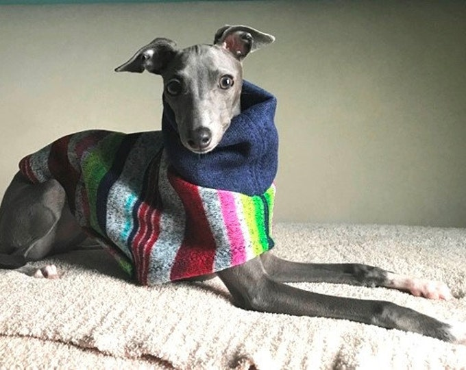 "Italian Greyhound Sweater. ""Multi-Stripe Sweater"" - Italian Greyhound Sizes."