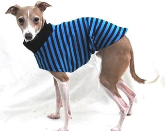 "Italian Greyhound Clothing. ""Aqua and Navy Stripe Tee"" - Italian Greyhound Sizes."