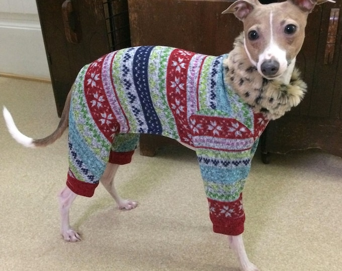 "Dog Pajamas. ""Ugly Christmas Leisure Suit"" - Italian Greyhound and small dog sizes"