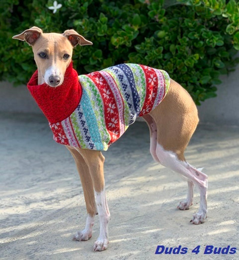 Dog Clothes Ugly Christmas Sweater Italian Greyhound Pet Clothing Uncle Hairy/'s Sweater Sweater for dog Dog Sweater Dog Apparel