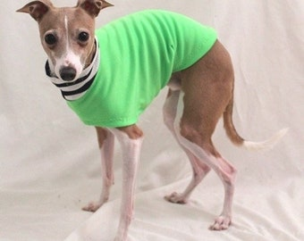 "Italian Greyhound Clothing. ""Apple Tee and Stripes"" - Italian Greyhound Sizes"