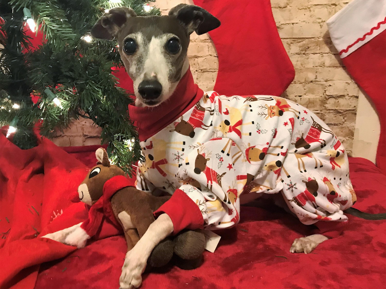 Christmas Pajamas For Dogs.Dog Pajamas Reindeer Christmas Pj S Italian Greyhound