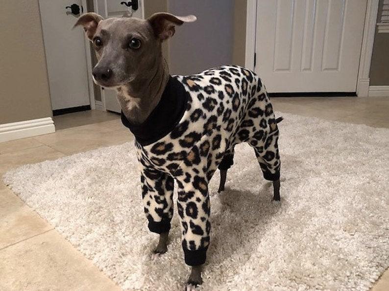 705ae96a4fd Dog Pajamas. Italian Greyhound Clothing. Dog pyjamas. Original