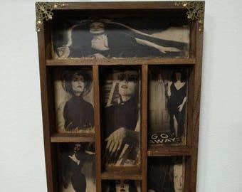 Horror Divas Cabinet of curiosities