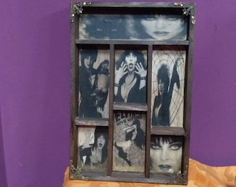 Elvira Mod.2 Cabinet of curiosities