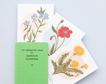 British Wild Flower Notelet Pack | Pack of 8 Illustrated Notelets | Notecard Pack | British Wildflowers | Little Paisley Designs
