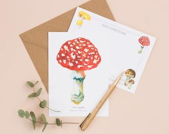 Mushrooms & Toadstools | Illustrated Set of 6 Notelets | Notelets | Mushrooms | Toadstools | Correspondence | Fungi | Notecards