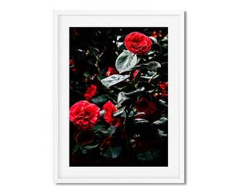 Digital download - photography flowers red - springtime in Paris - wall decor