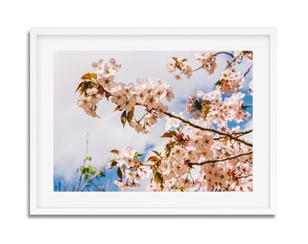 Digital download - photography flowers pink - springtime in Paris - wall decor