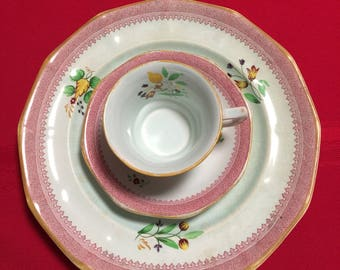 Calyx Ware Adams, England Dinner Plate, Cup and Saucer. Lowenstoft, Hand Painted