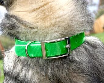 Lime Green Biothane Buckle Dog Collar