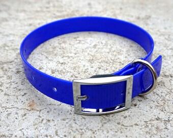 Royal Blue Biothane Buckle Dog Collar