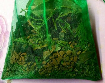 Success & Money - Success, Money, Prosperity - Healing Sachet - Herbal Sachet - Spiritual Healing - Spell and Ritual Work