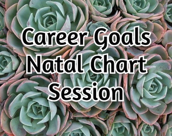 Career & Goals - Astrology Reading + Zoom Meeting - Natal Chart Report - Aspects and Planets - Blockages Advice - Astrology Reading