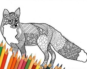 eekhoorn kleuren pagina tekenen kleuren eekhoorn eekhoorn