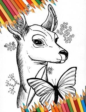 La vie est trange cerf colorier papillon bleu impression etsy - Cerf a colorier ...