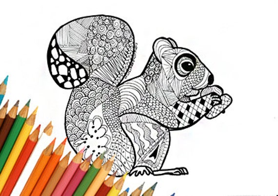 Eichhörnchen Färbung Seite Zeichnen Malen Eichhörnchen Etsy