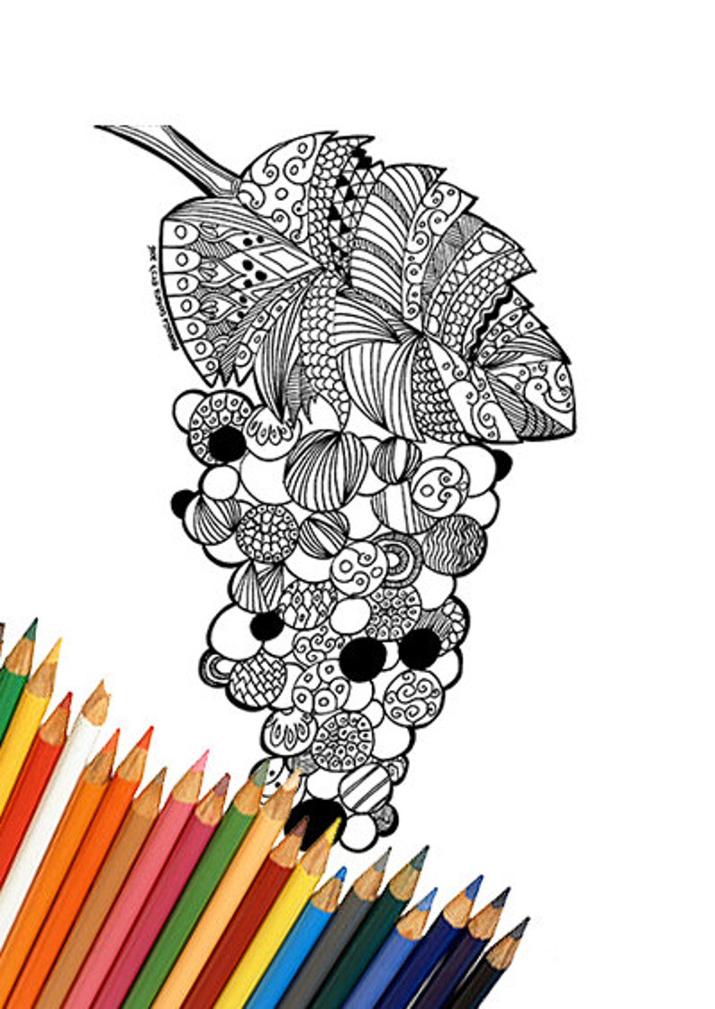 Disegno Grappolo Duva Da Colorare Stampabile Adulti Etsy