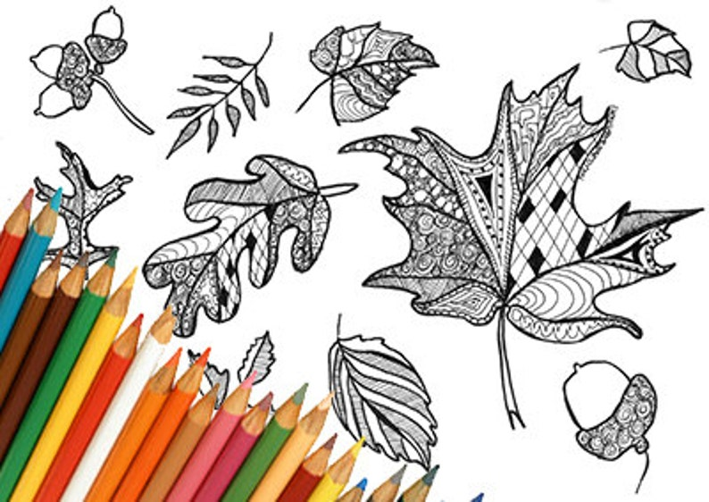 Kleurplaten Herfstbladeren.Herfstbladeren Herfst Bladeren Zentangle Kleurplaat Pagina Etsy