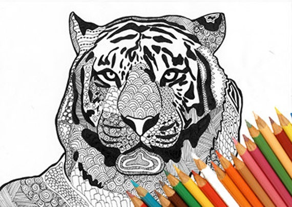 Tiger Coloring Page Animal Zentangle