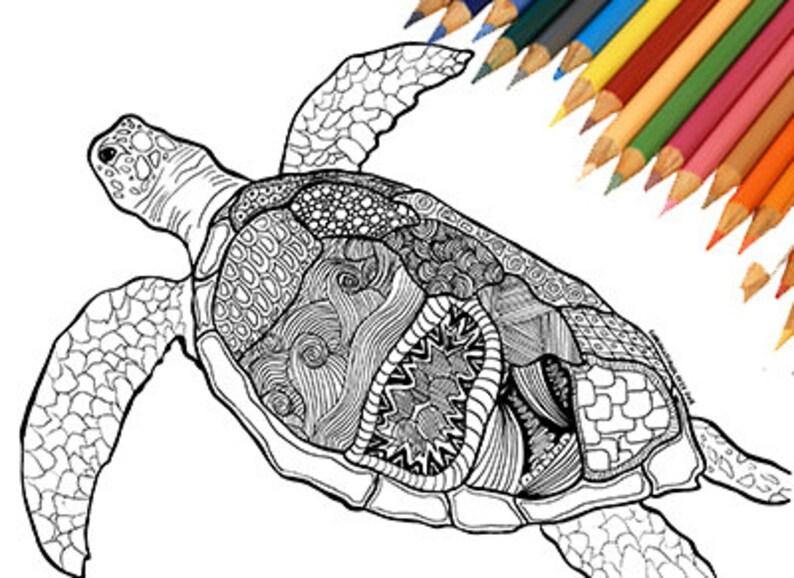 Tartaruga Di Mare Da Colorare Stampabile Mare Spiaggia Natura Etsy