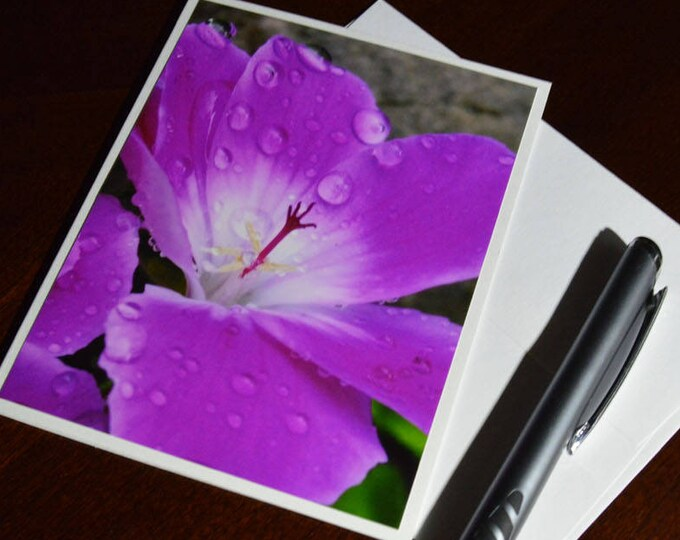Geranium Photo Greeting Card, Pink Floral, Stigma Reaching