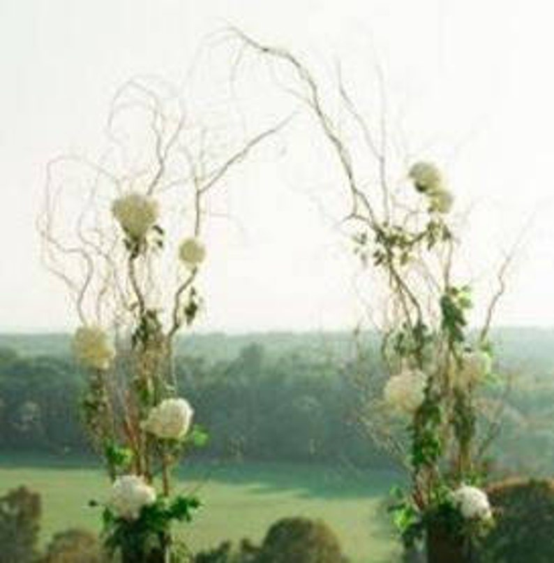 Diy Wedding Arch.Branches For Diy Curly Willow Wedding Arch