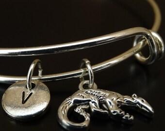 Anteater Bangle Bracelet, Adjustable Expandable Bangle Bracelet, Anteater Charm, Anteater Pendant, Anteater Jewelry, Ant Eater Bracelet