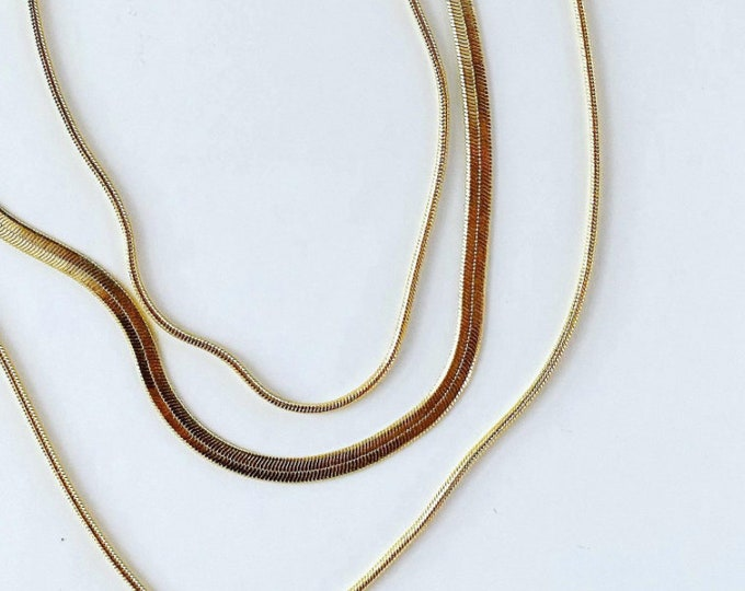 Layered Necklace with a Herringbone chain