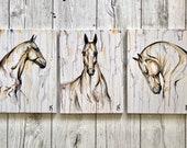 Faces - 3 piece horse painting set
