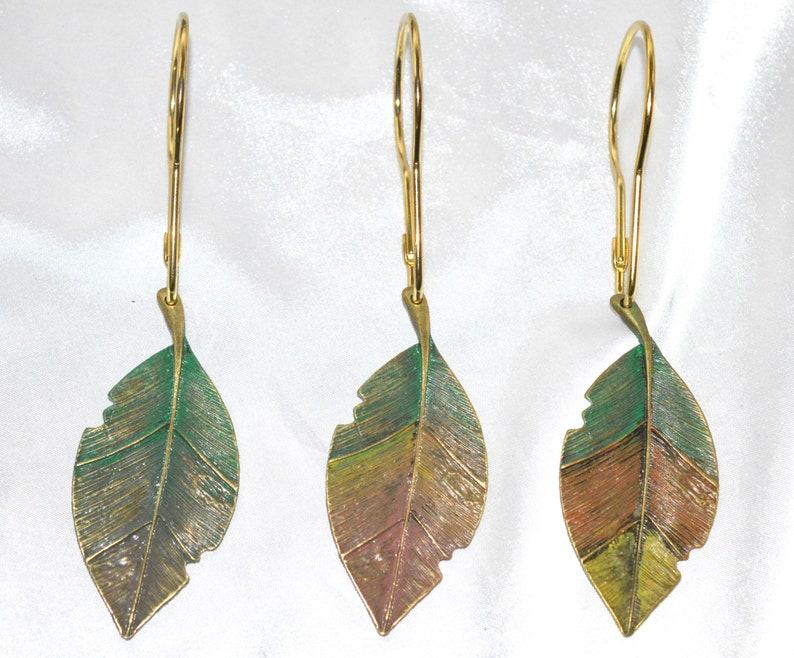 Leaf Shower Curtain Hooks Elm Tree Leaves Florida Live Oak