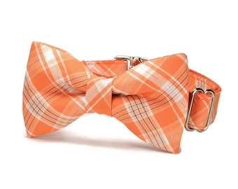 Orange Plaid Bow Tie Dog Collar
