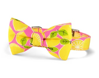 Pink Lemonade Bow Tie Dog Collar