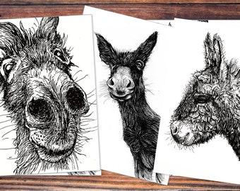 Postcard set (6 pieces): Donkey