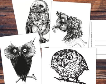 Postcard set (8 pieces): Owls